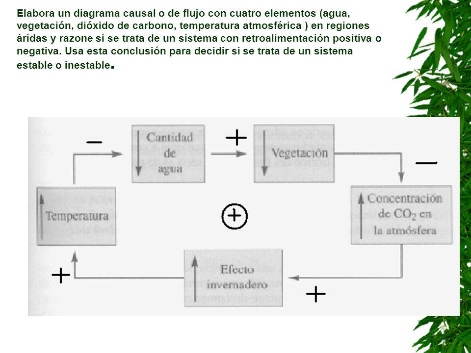 Elabora un diagrama causal o de flujo con cuatro elementos (agua, vegetación, dióxido de carbono, temperatura atmosférica ) en regiones áridas y razone si se trata de un sistema con retroalimentación positiva o negativa.