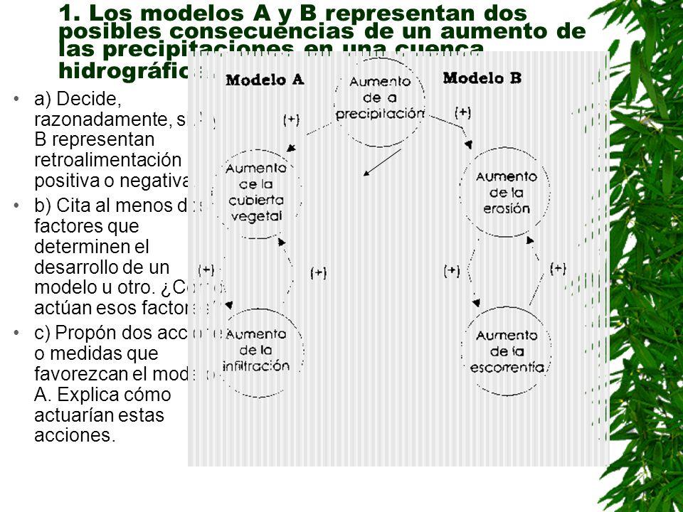 1. Los modelos A y B representan dos posibles consecuencias de un aumento de las precipitaciones en una cuenca hidrográfica.