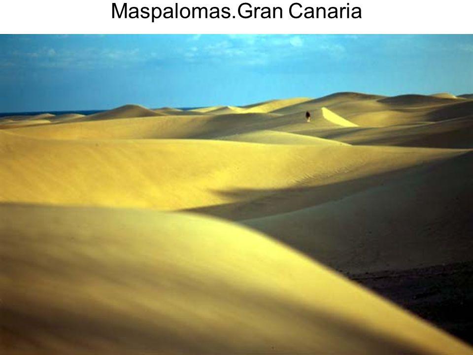 Maspalomas.Gran Canaria