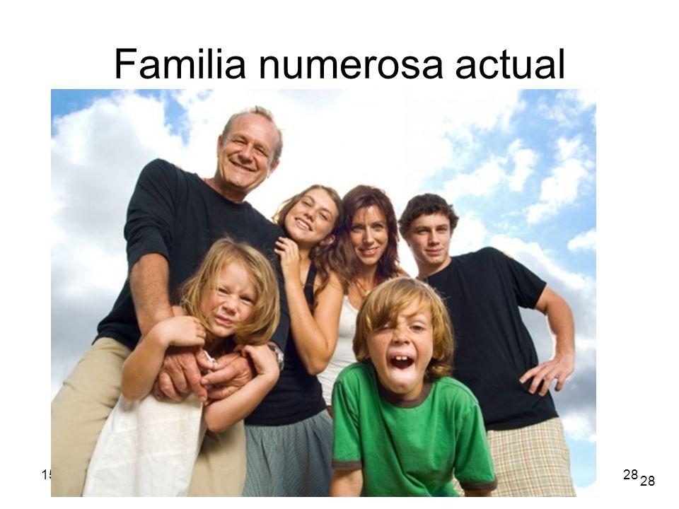 Familia numerosa actual