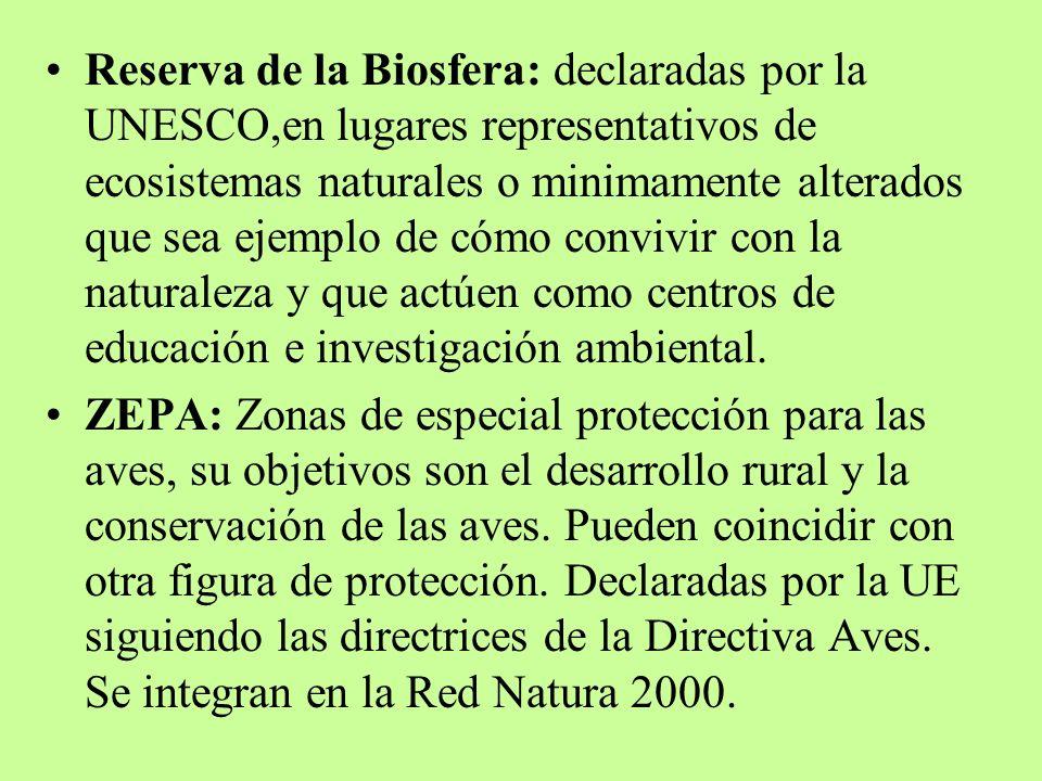 Reserva de la Biosfera: declaradas por la UNESCO,en lugares representativos de ecosistemas naturales o minimamente alterados que sea ejemplo de cómo convivir con la naturaleza y que actúen como centros de educación e investigación ambiental.