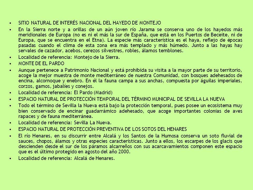 SITIO NATURAL DE INTERÉS NACIONAL DEL HAYEDO DE MONTEJO