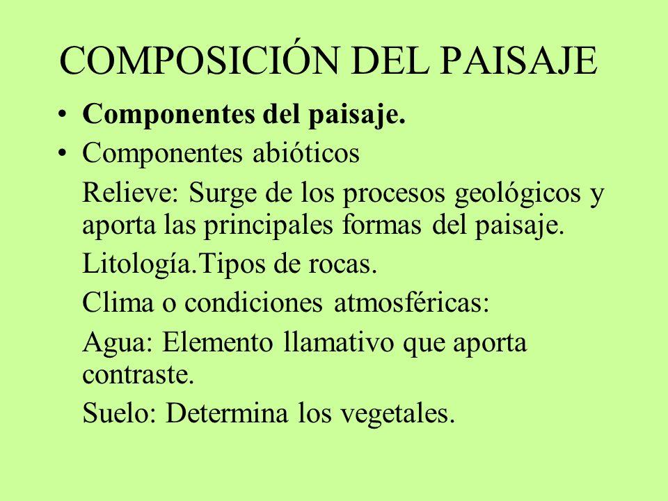 COMPOSICIÓN DEL PAISAJE