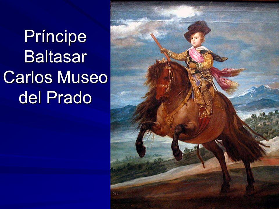 Príncipe Baltasar Carlos Museo del Prado