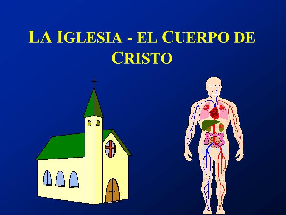 LA IGLESIA - EL CUERPO DE CRISTO