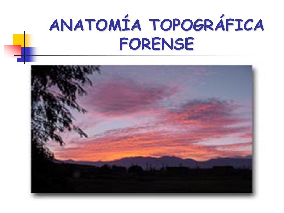 ANATOMÍA TOPOGRÁFICA FORENSE