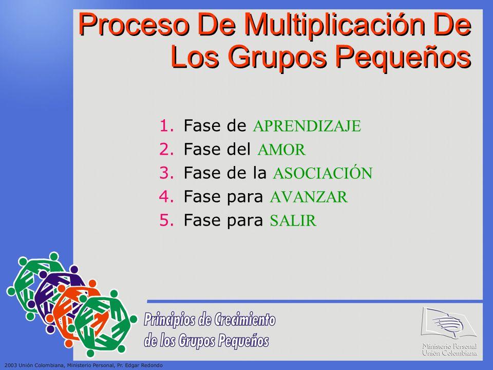 Proceso De Multiplicación De Los Grupos Pequeños