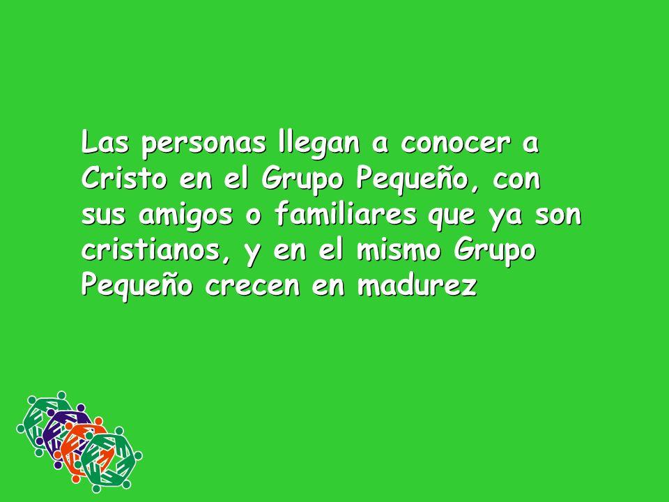 Las personas llegan a conocer a Cristo en el Grupo Pequeño, con sus amigos o familiares que ya son cristianos, y en el mismo Grupo Pequeño crecen en madurez