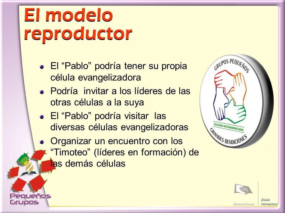 El modelo reproductor El Pablo podría tener su propia célula evangelizadora. Podría invitar a los líderes de las otras células a la suya.