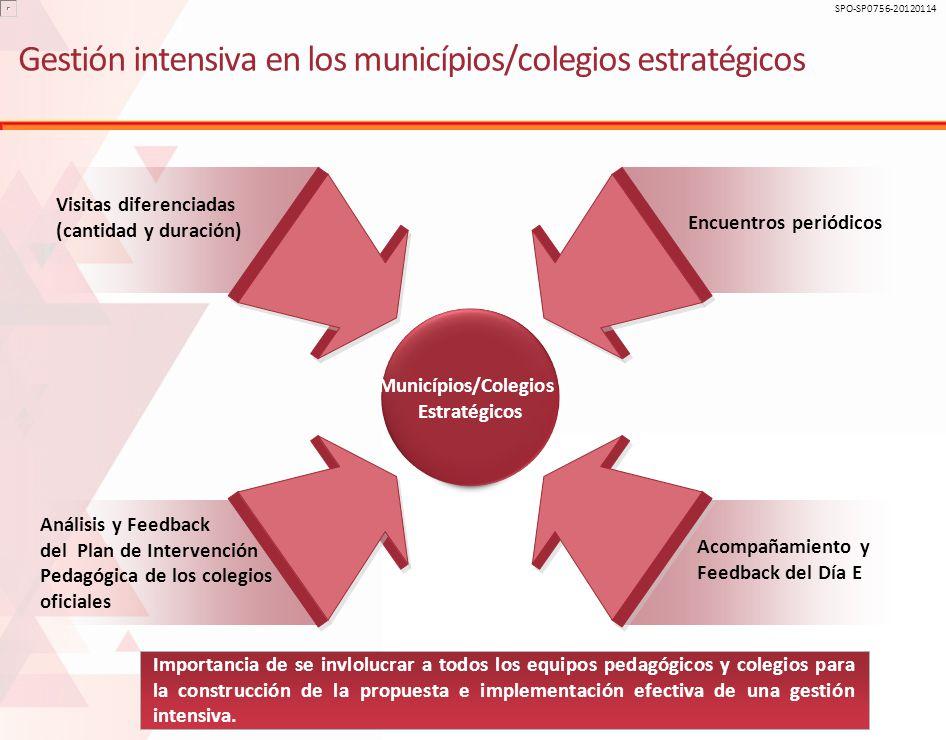 Gestión intensiva en los municípios/colegios estratégicos