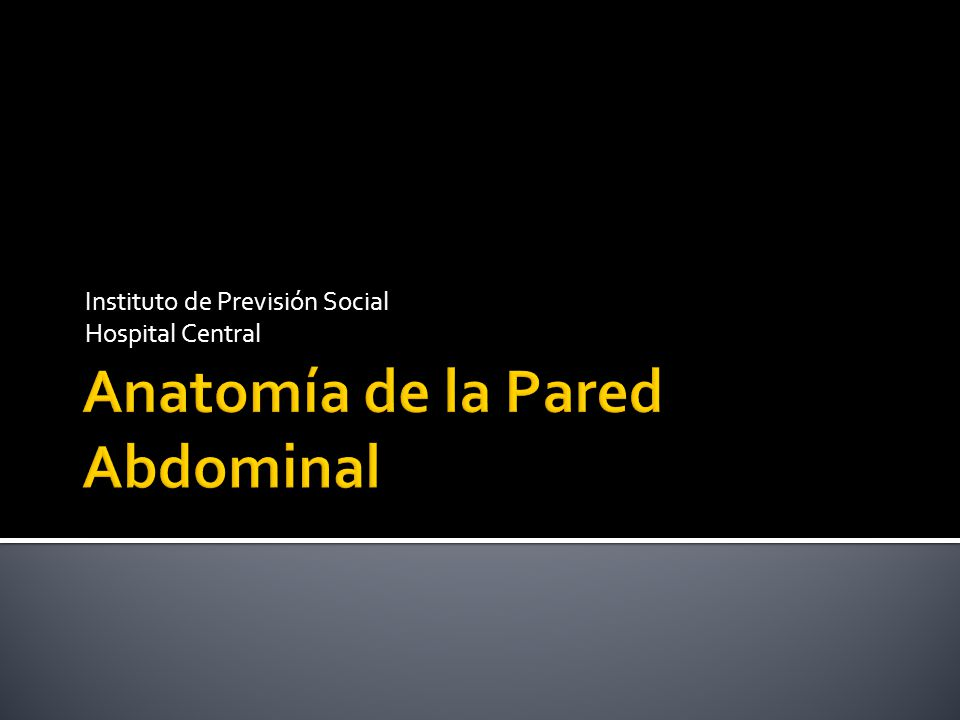 Anatomía de la Pared Abdominal - ppt video online descargar