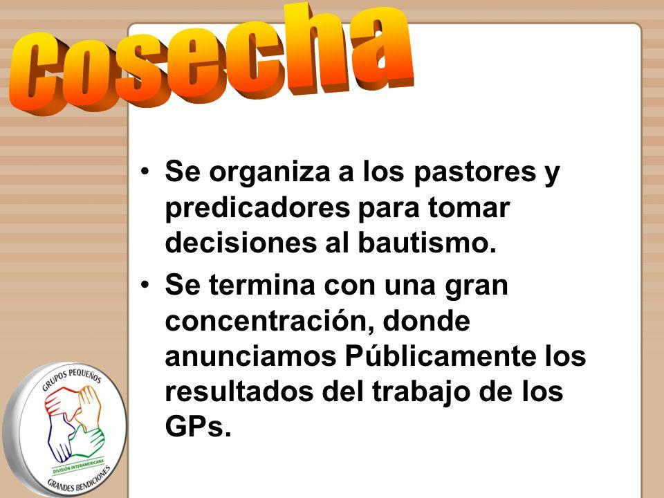Cosecha Se organiza a los pastores y predicadores para tomar decisiones al bautismo.
