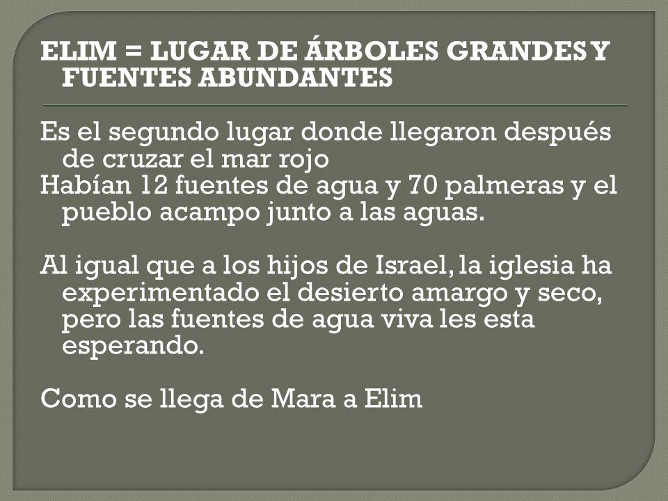 ELIM = LUGAR DE ÁRBOLES GRANDES Y FUENTES ABUNDANTES Es el segundo lugar donde llegaron después de cruzar el mar rojo Habían 12 fuentes de agua y 70 palmeras y el pueblo acampo junto a las aguas.
