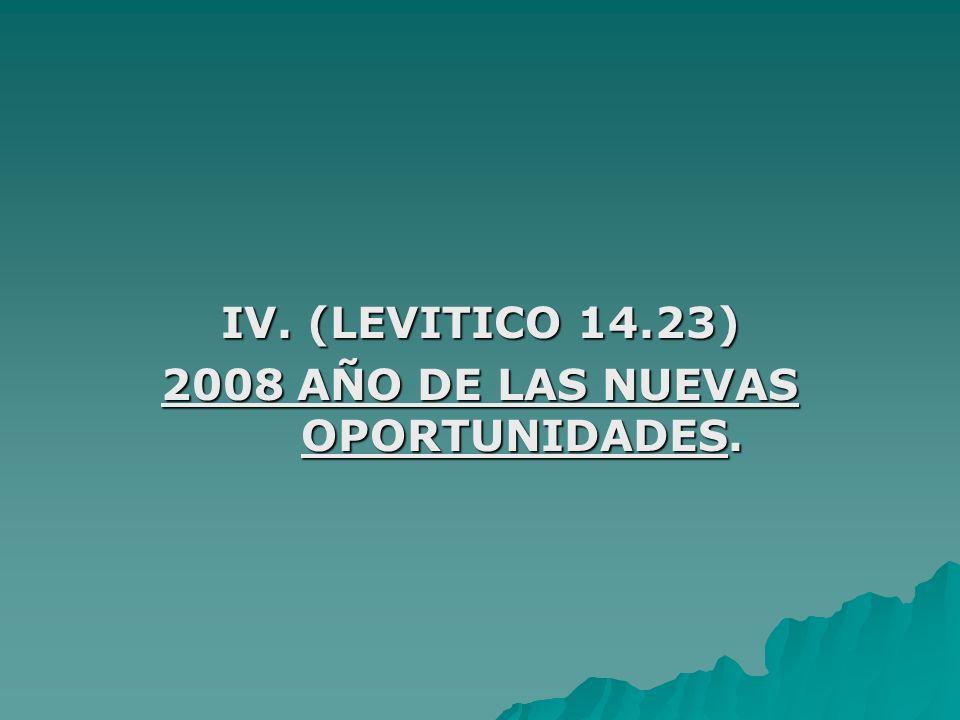 2008 AÑO DE LAS NUEVAS OPORTUNIDADES.
