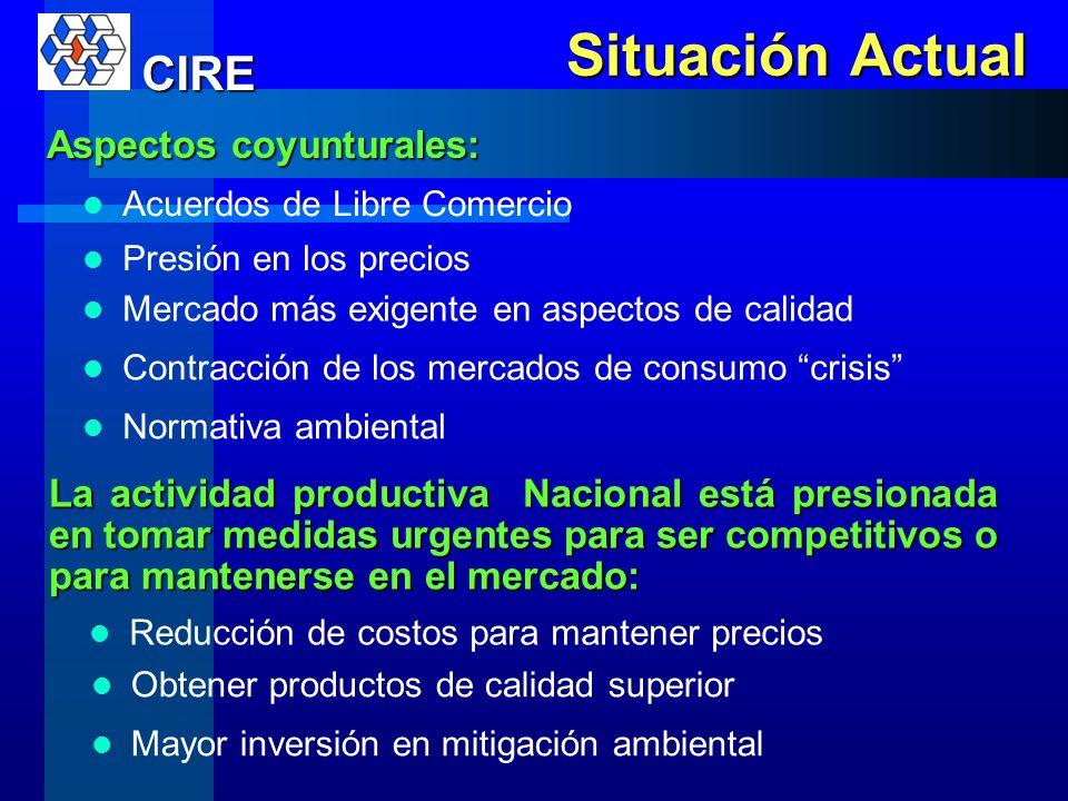Situación Actual CIRE Aspectos coyunturales: