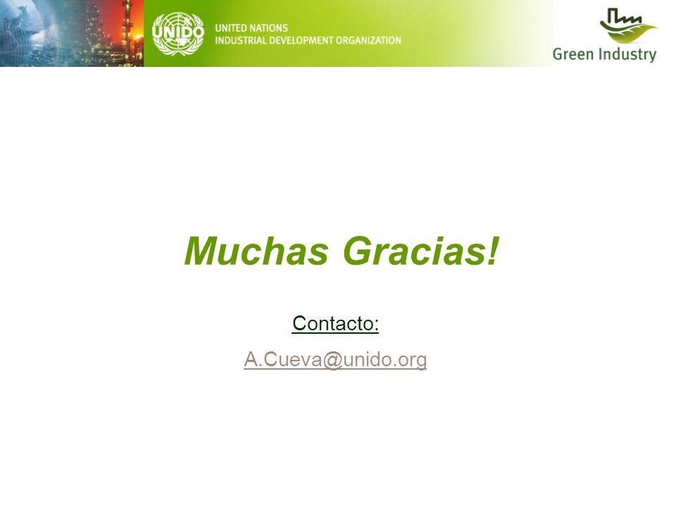 Muchas Gracias! Contacto: A.Cueva@unido.org