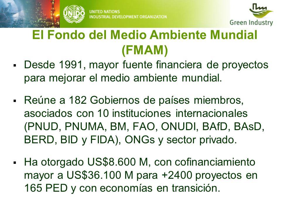 El Fondo del Medio Ambiente Mundial (FMAM)