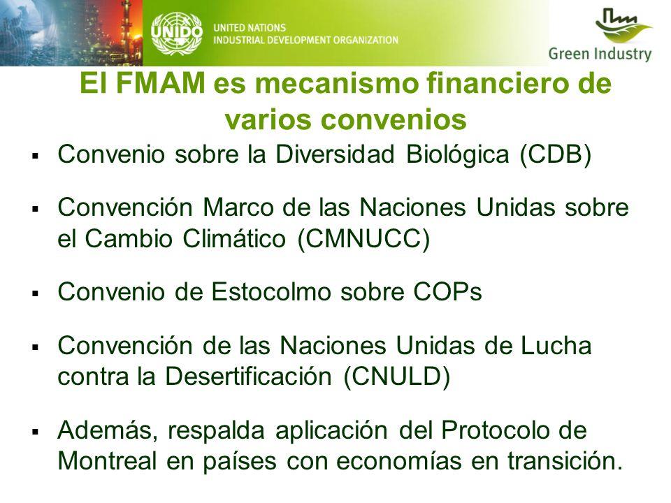 El FMAM es mecanismo financiero de varios convenios