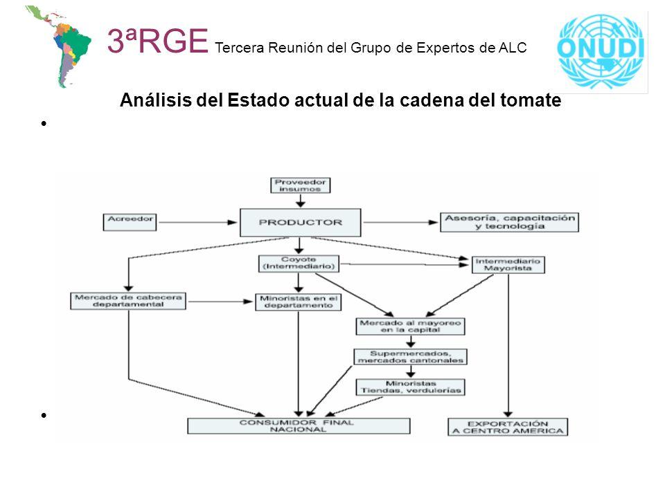 Análisis del Estado actual de la cadena del tomate
