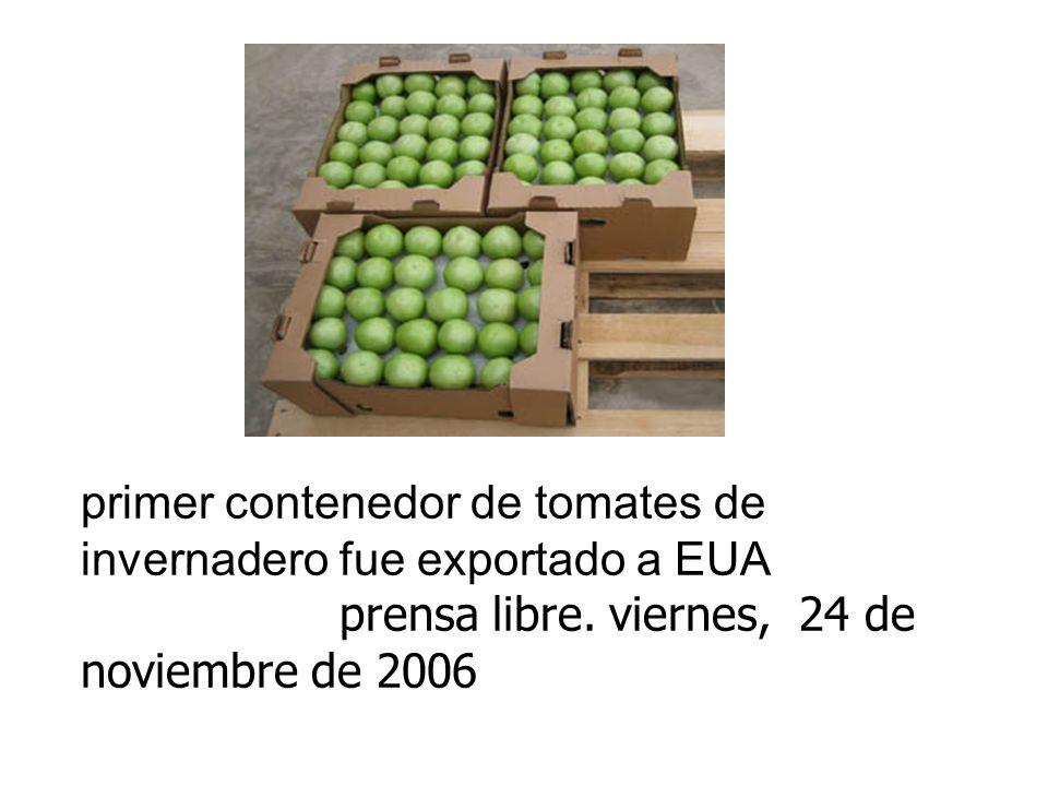 primer contenedor de tomates de invernadero fue exportado a EUA prensa libre.