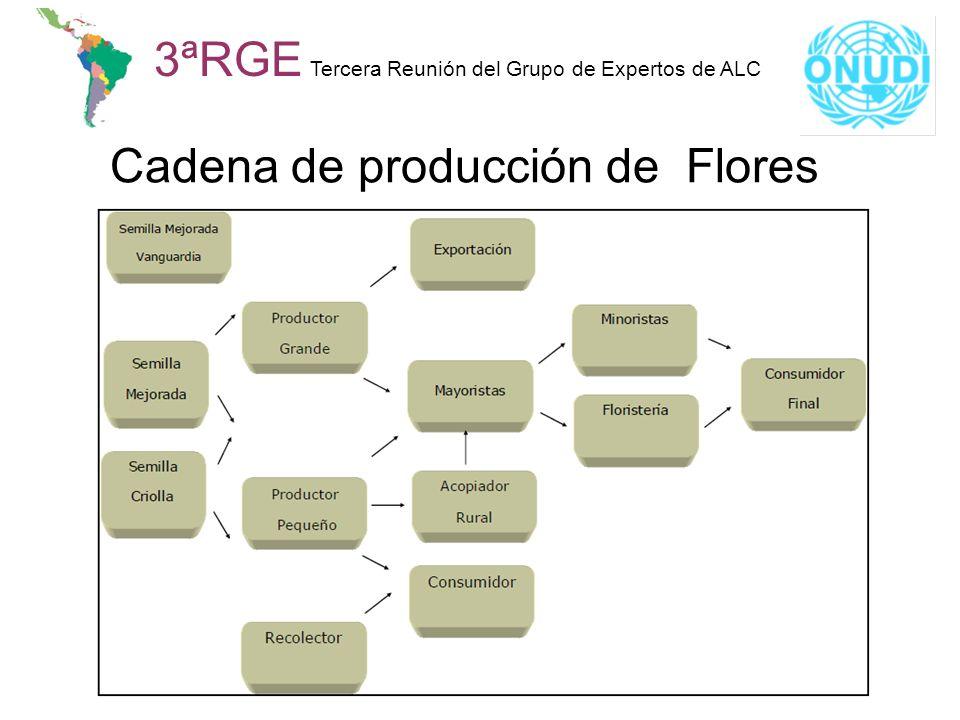 Cadena de producción de Flores
