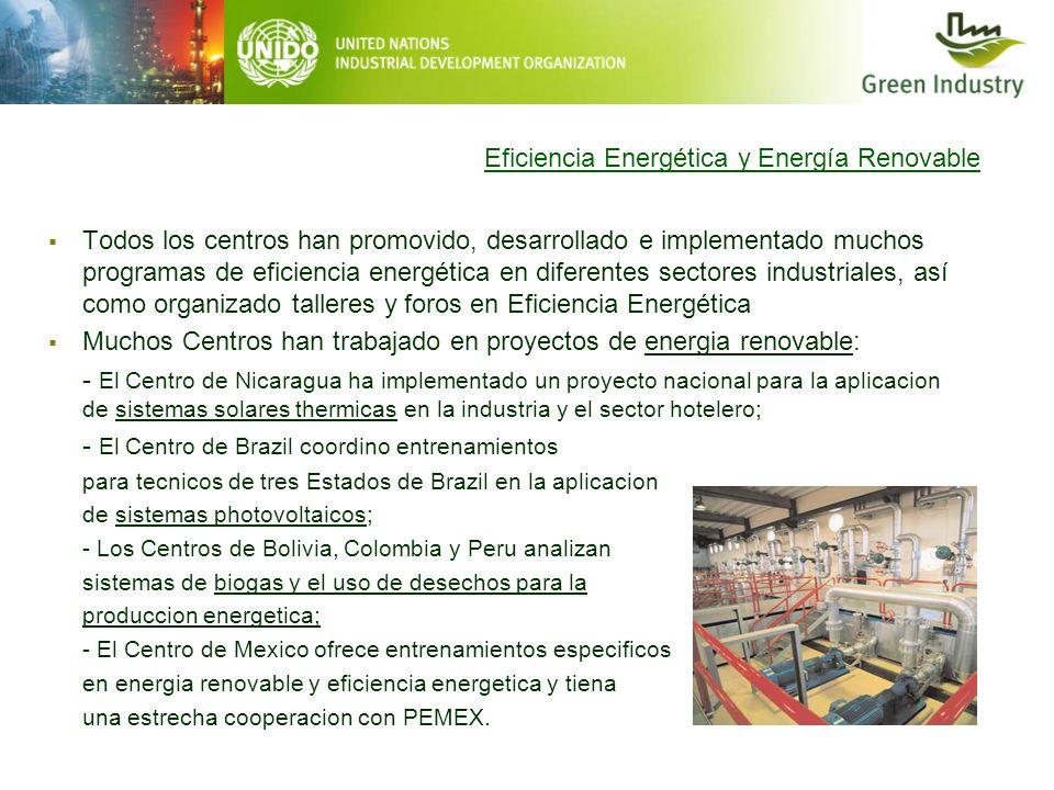 Eficiencia Energética y Energía Renovable