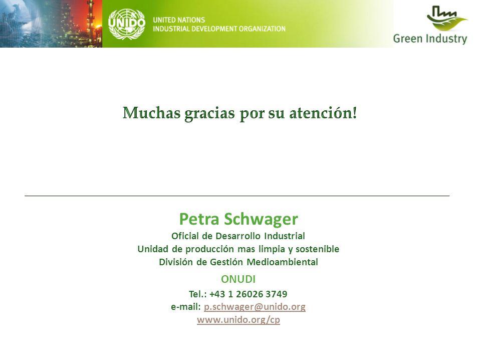 Petra Schwager Muchas gracias por su atención! ONUDI