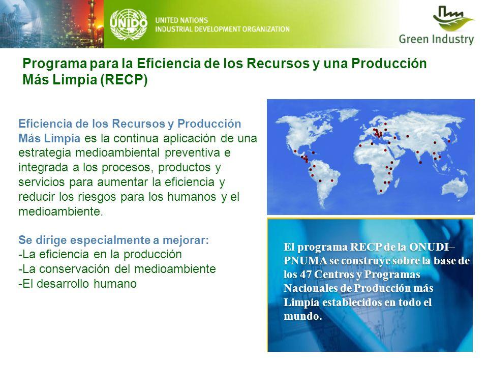 Programa para la Eficiencia de los Recursos y una Producción Más Limpia (RECP)