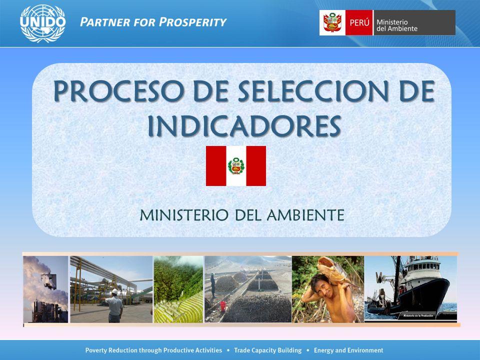 PROCESO DE SELECCION DE INDICADORES