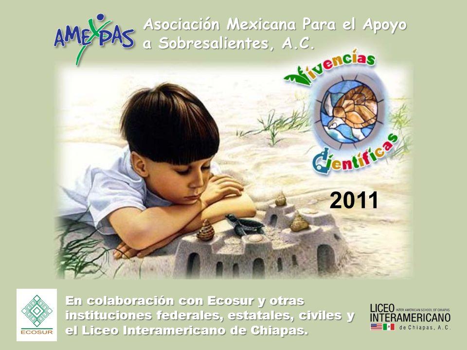 Asociación Mexicana Para el Apoyo a Sobresalientes, A.C.
