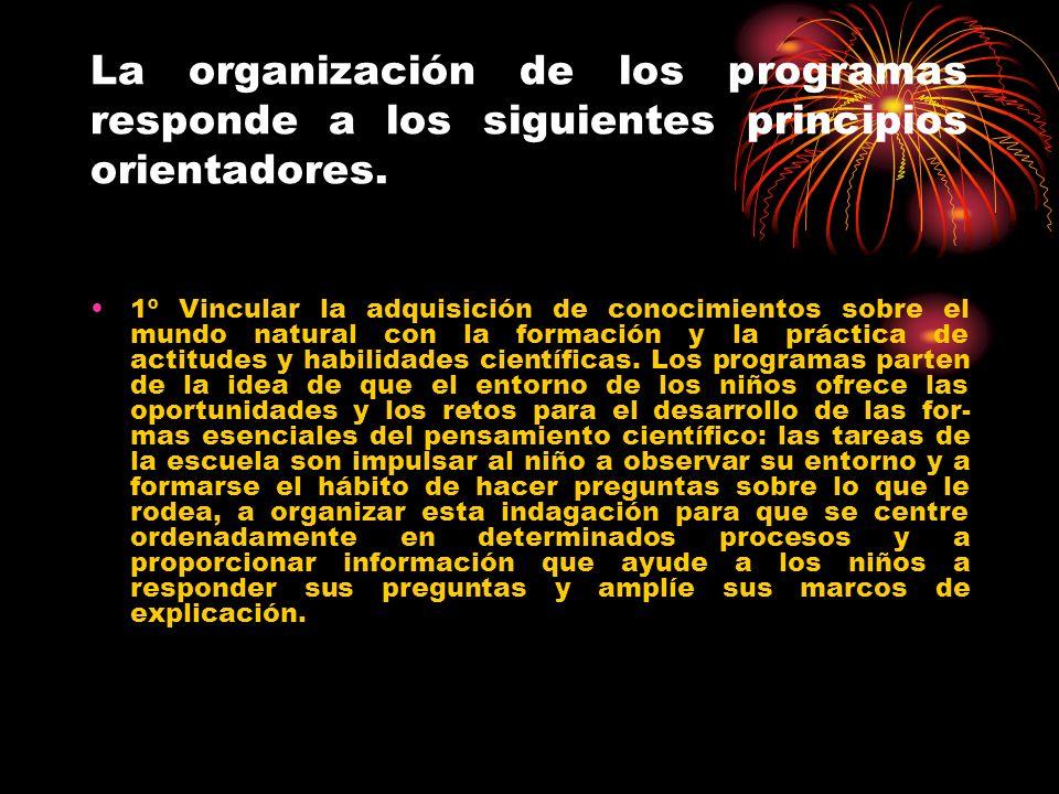 La organización de los programas responde a los siguientes principios orientadores.