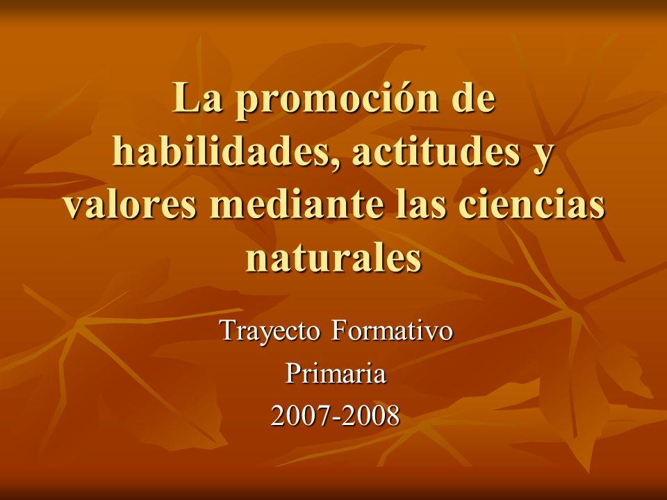 Trayecto Formativo Primaria 2007-2008