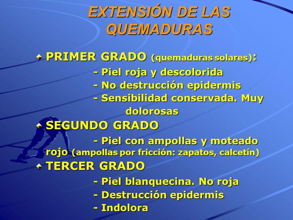 EXTENSIÓN DE LAS QUEMADURAS