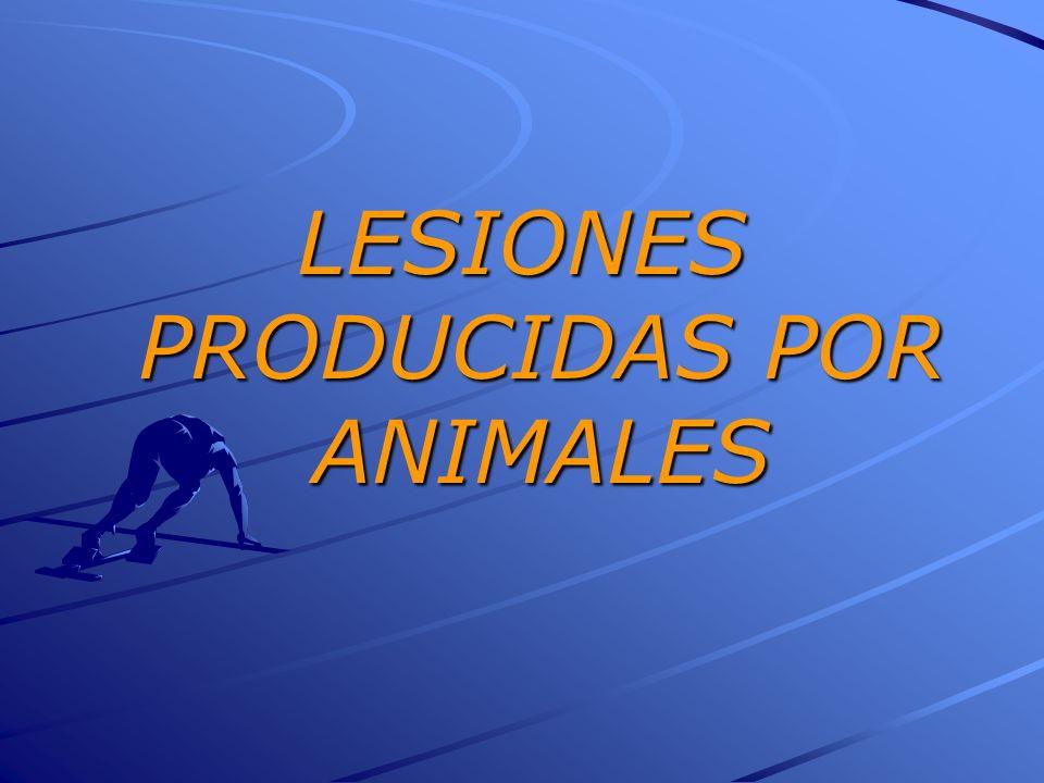 LESIONES PRODUCIDAS POR ANIMALES