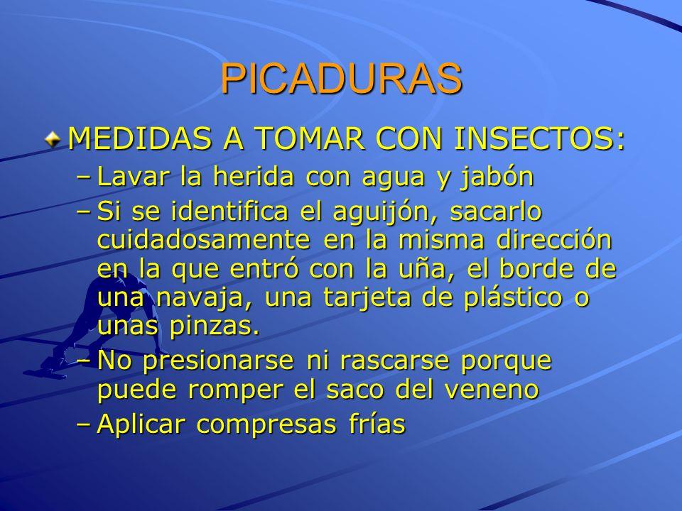 PICADURAS MEDIDAS A TOMAR CON INSECTOS: