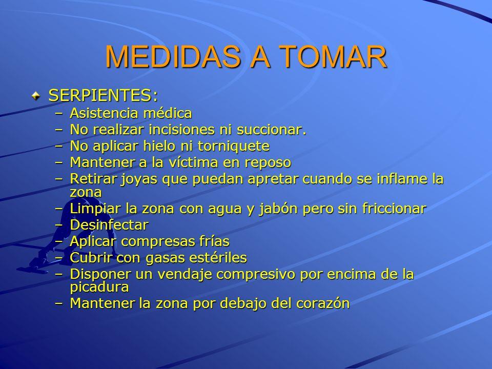 MEDIDAS A TOMAR SERPIENTES: Asistencia médica