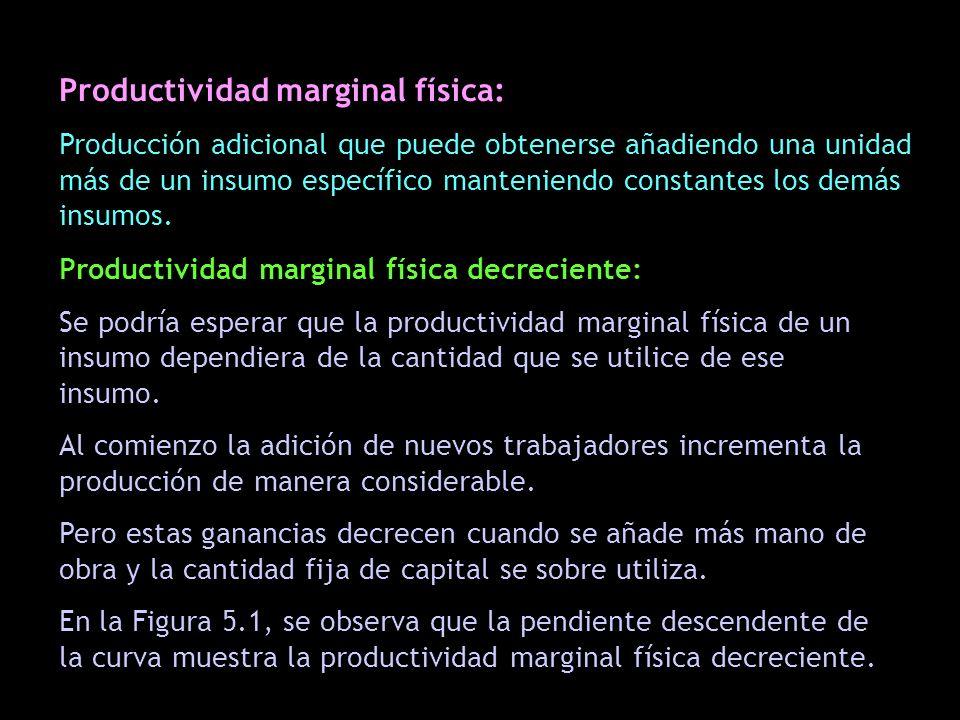 Productividad marginal física: