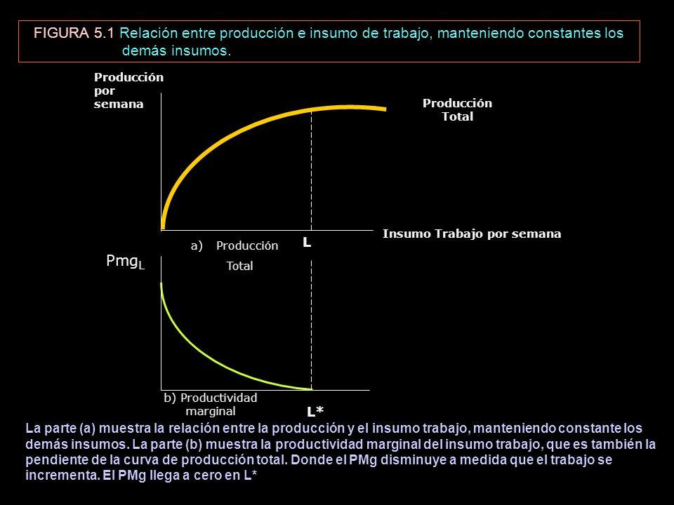 b) Productividad marginal