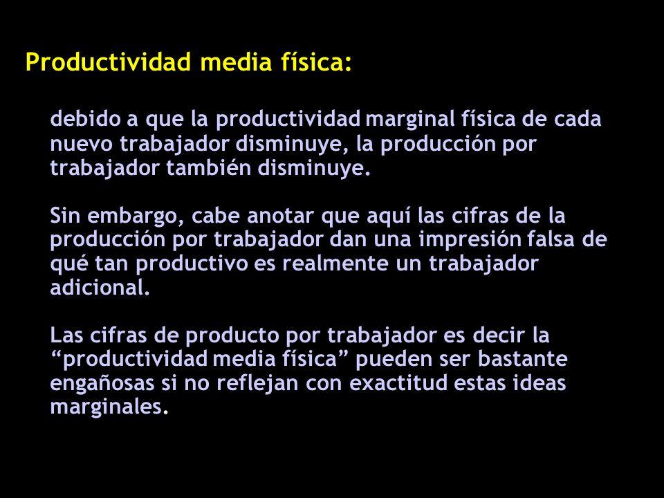 Productividad media física: