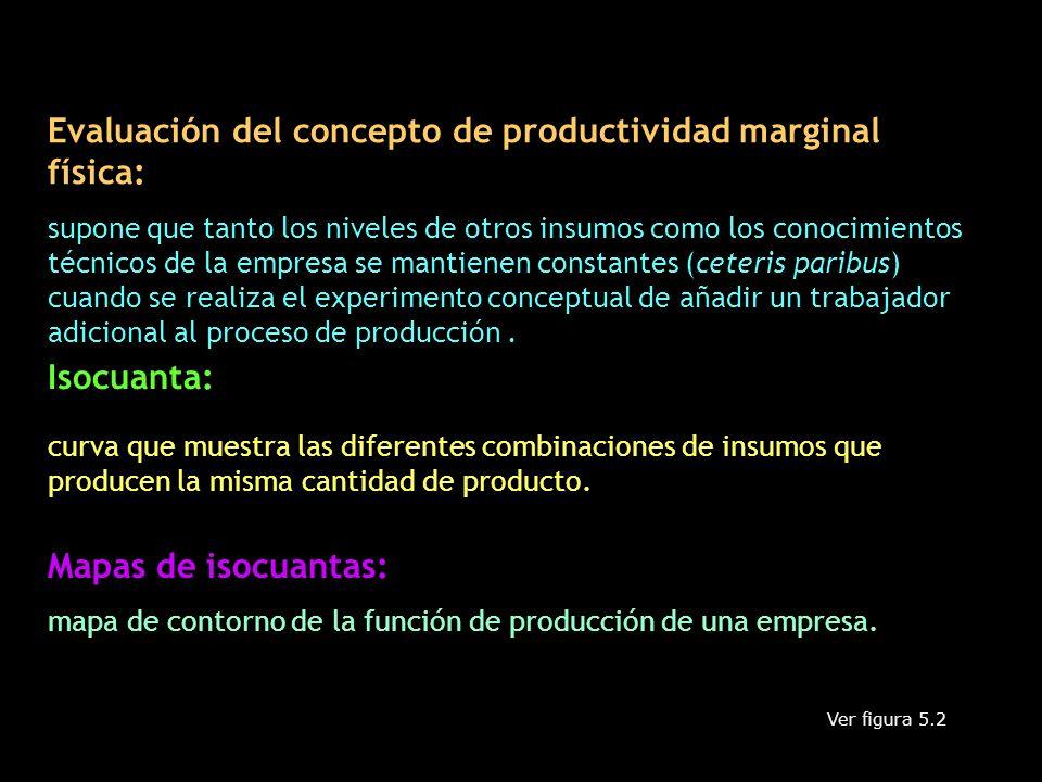 Evaluación del concepto de productividad marginal física: