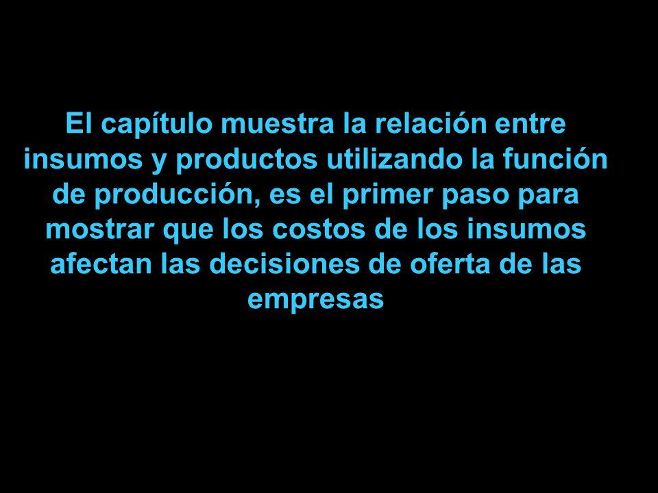 El capítulo muestra la relación entre insumos y productos utilizando la función de producción, es el primer paso para mostrar que los costos de los insumos afectan las decisiones de oferta de las empresas