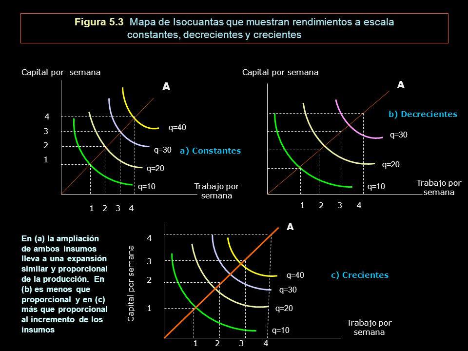 Figura 5.3 Mapa de Isocuantas que muestran rendimientos a escala constantes, decrecientes y crecientes