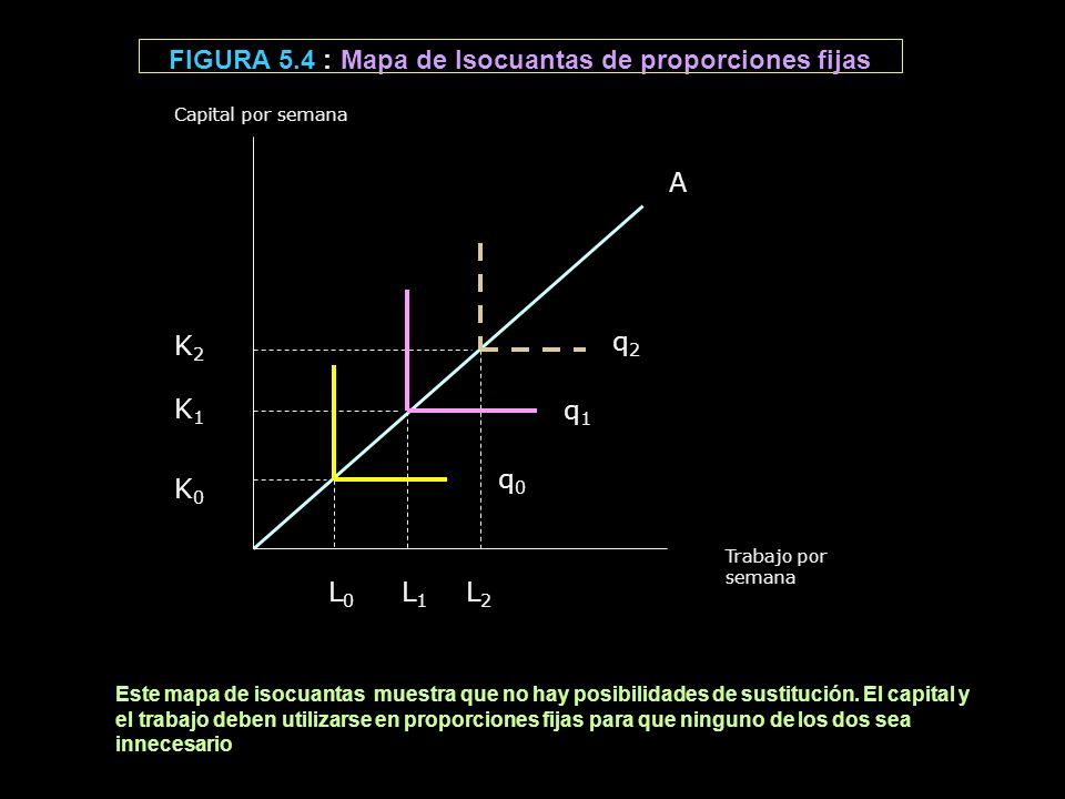 FIGURA 5.4 : Mapa de Isocuantas de proporciones fijas