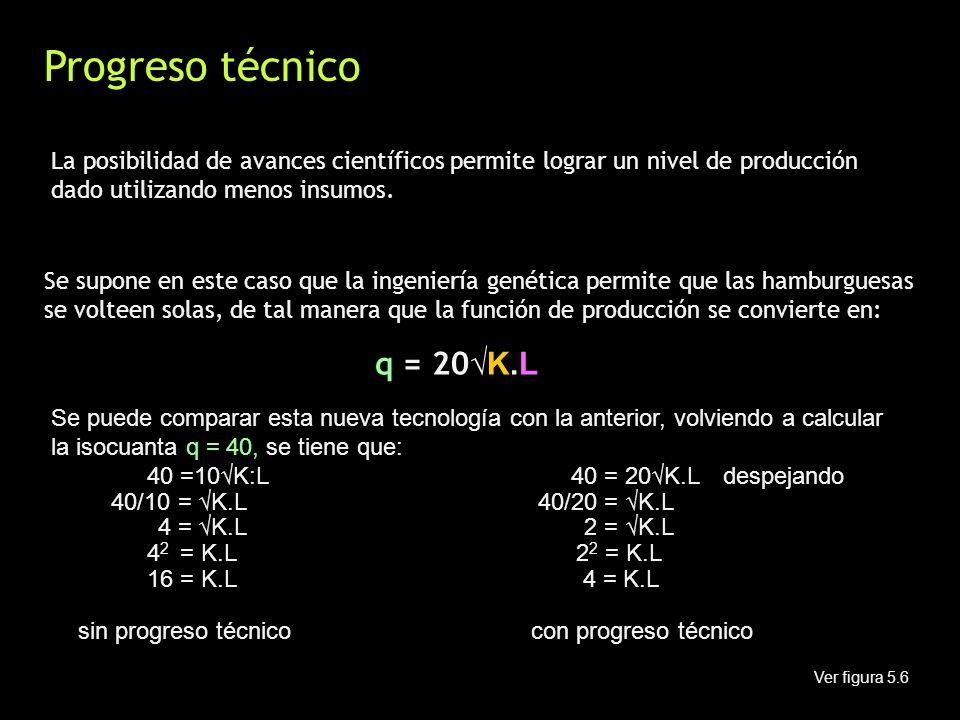 Progreso técnico La posibilidad de avances científicos permite lograr un nivel de producción dado utilizando menos insumos.