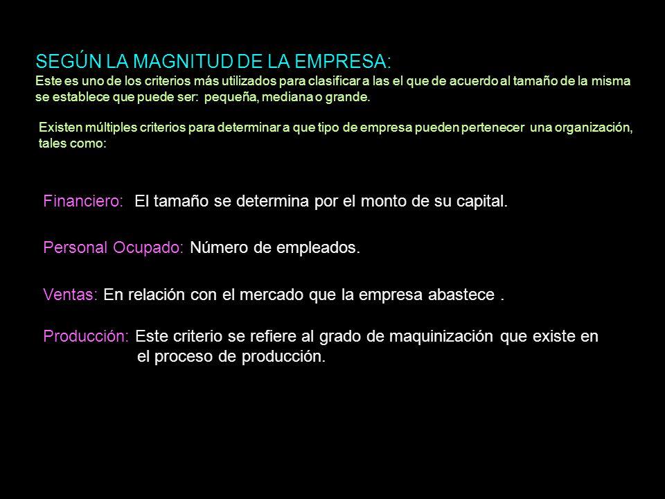 SEGÚN LA MAGNITUD DE LA EMPRESA: