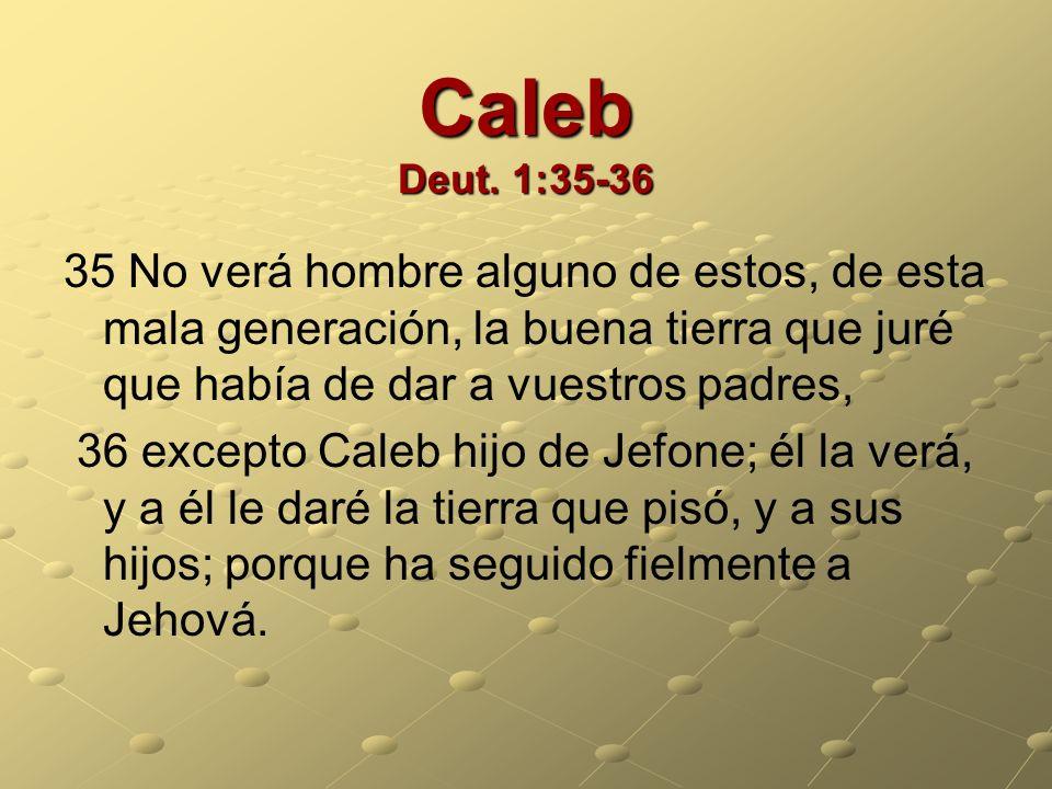 Caleb Deut. 1:35-36 35 No verá hombre alguno de estos, de esta mala generación, la buena tierra que juré que había de dar a vuestros padres,