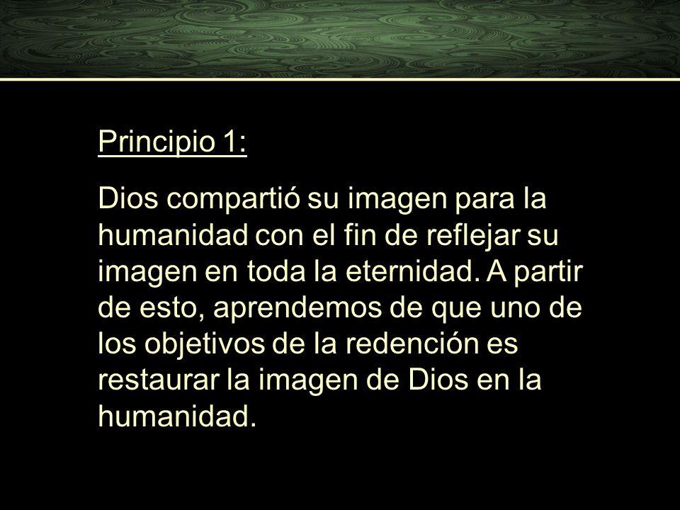Principio 1: