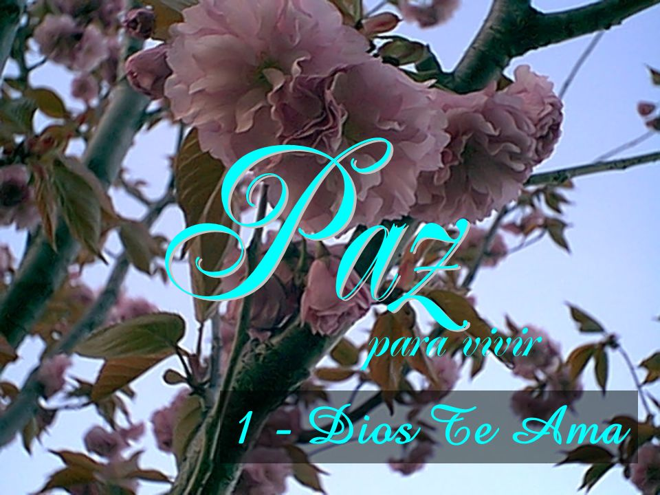 Paz para vivir 1 - Dios Te Ama