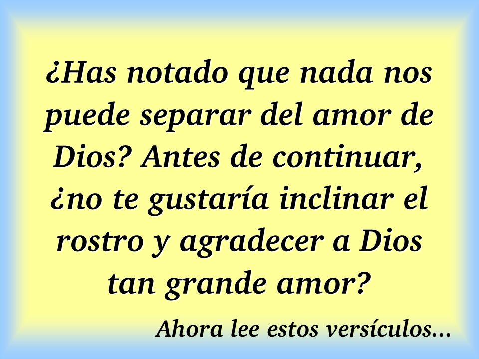 ¿Has notado que nada nos puede separar del amor de Dios