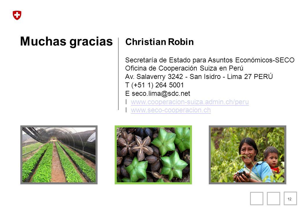 Muchas gracias Christian Robin